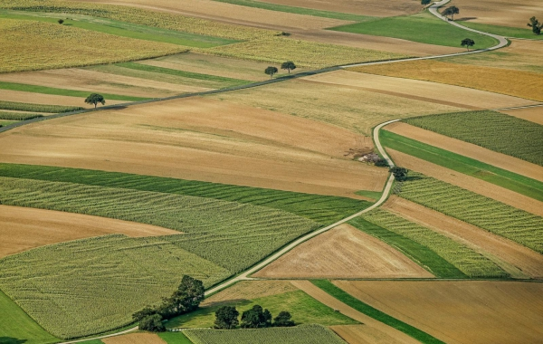 Bilance půdy